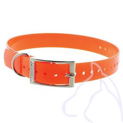 Collier PVC chiens Sangle 2.5 x 34-60 cm, orange